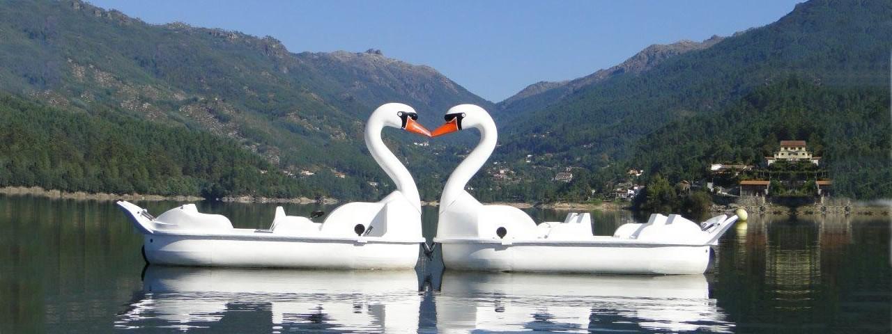Hydro-Pedale von Tieren